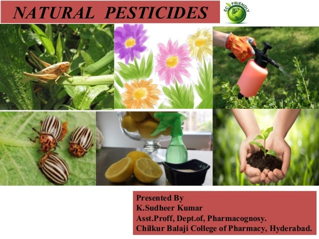 natural based insecticides Tobacco and nicotine  a green pesticide industry based on  a major agricultural pest that is increasingly resistant to current insecticides.