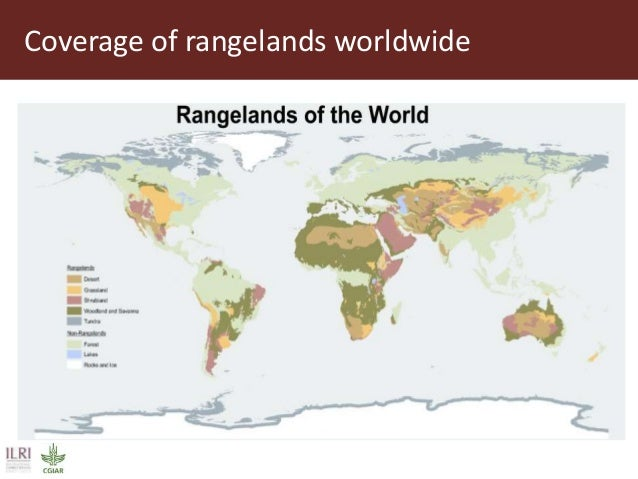Solutions for managing and protecting rangelands:  Ongoing research and innovations through R4D Slide 2