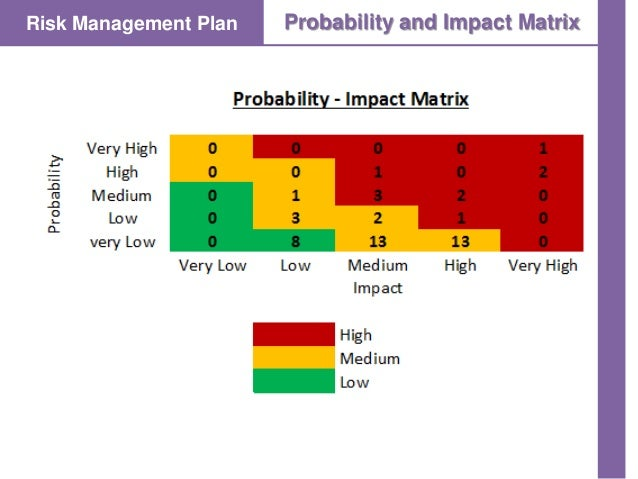 Project Risk Management O2d