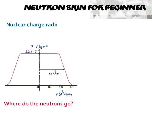 Neutron Skin Measurements at Mainz Slide 2