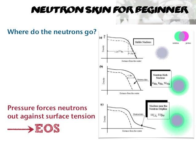 Neutron Skin Measurements at Mainz Slide 3