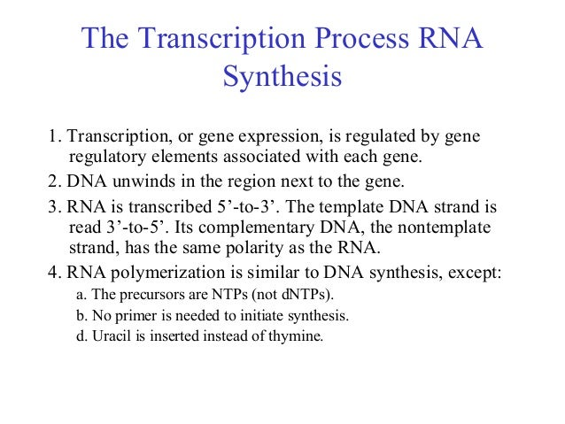 thesis transcription