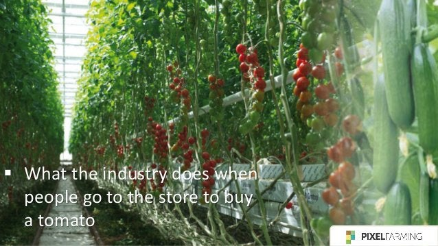 ▪ When consumers grow food