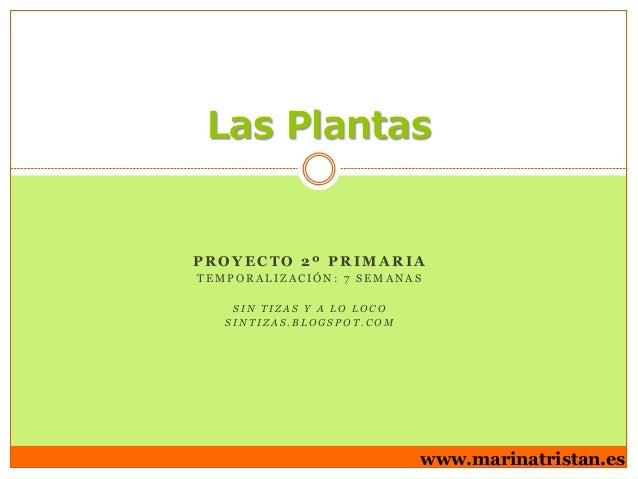 Las Plantas  PROYECTO 2º PRIMARIA TEMPORALIZACIÓN: 7 SEMANAS SIN TIZAS Y A LO LOCO SINTIZAS.BLOGSPOT.COM  www.marinatrista...