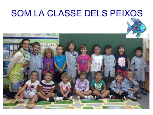 SOM LA CLASSE DELS PEIXOS