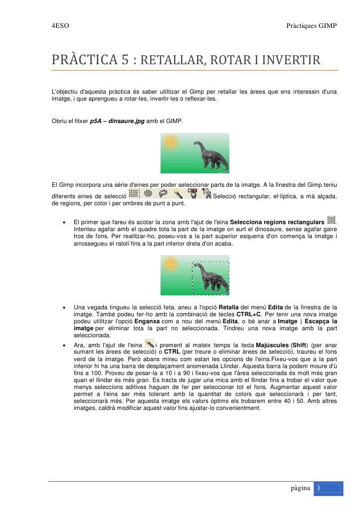 4ESO                                                                                   Pràctiques GIMP    PRÀCTICA 5 : RET...