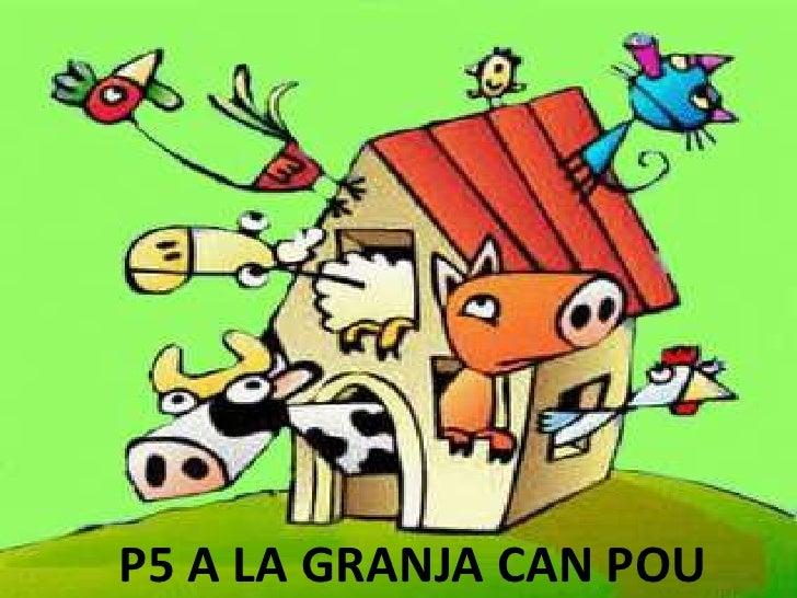 P5 A LA GRANJA CAN POU<br />
