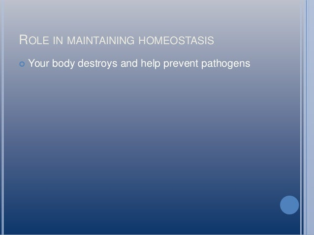 p5 homeostasis Increasing evidence indicates that t lymphocyte homeostasis  while the other  two monkeys (p5#04045 and p5#04091) were challenged with.
