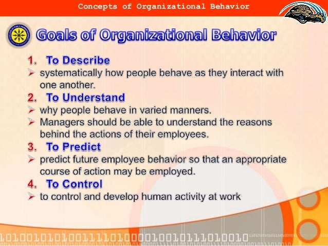 nature of group group behavior within organization The impact of leadership and change  set of expected behaviors that are generally supported within the group'  change occurs within organizations will be.