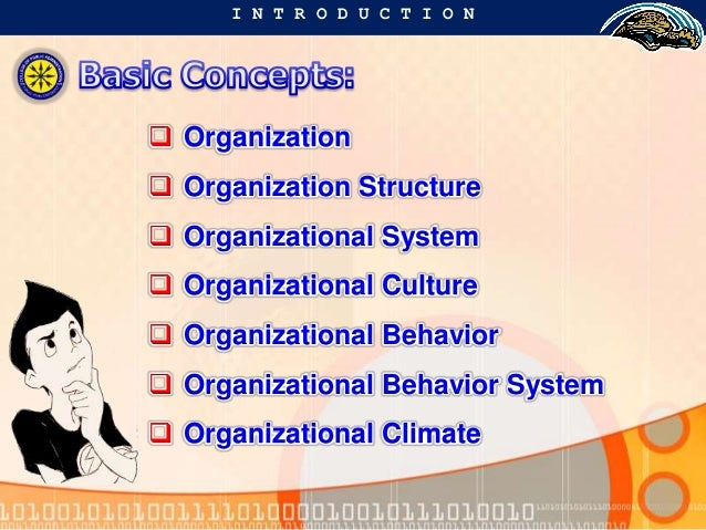 group behavior in organizations Start studying group behavior in organizations learn vocabulary, terms, and more with flashcards, games, and other study tools.
