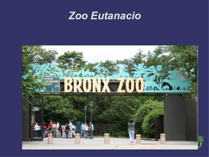 Zoo Eutanacio