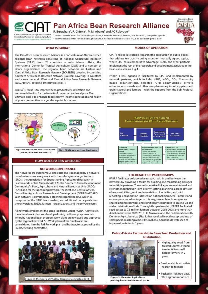 Pan Africa Bean Research Alliance                                      R. Buruchara1, R. Chirwa2 , M.M. Abang1 and J.C Rub...