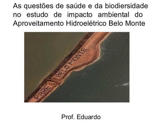 As questões de saúde e da biodiersidade no estudo de impacto ambiental do Aproveitamento Hidroelétrico Belo Monte  Prof. E...