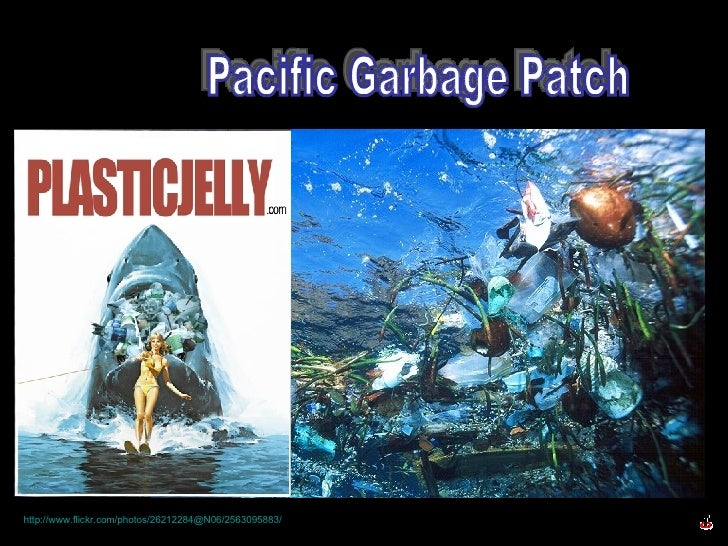 Pacific Garbage Patch http://www.flickr.com/photos/26212284@N06/2563095883/