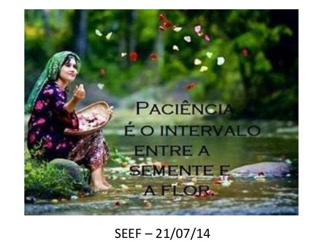 SEEF – 21/07/14