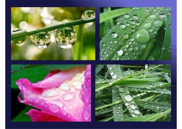 Ако се земљиштенагло охладииспод 0˚С, воденапара се уприземнимслојевима нагломрзне и настајеслана. То сеобично дешава напо...