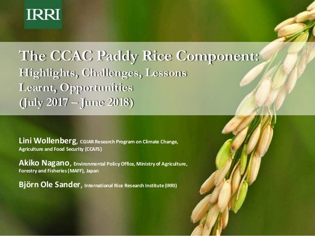 The CCAC Paddy Rice Component: Highlights, Challenges, Lessons Learnt, Opportunities (July 2017 – June 2018) Lini Wollenbe...