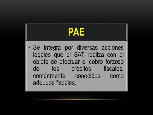 Procedimiento Administrativo de Ejecución  Slide 2