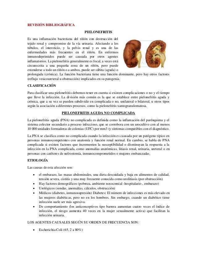 Proceso de atención de enfermería- Pielonefritis