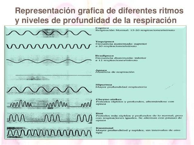 Representación grafica de diferentes ritmos y niveles de profundidad de la respiración