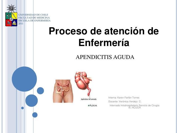 UNIVERSIDAD DE CHILEFACULTAD DE MEDICINAESCUELA DE ENFERMERÍA2011                   Proceso de atención de                ...