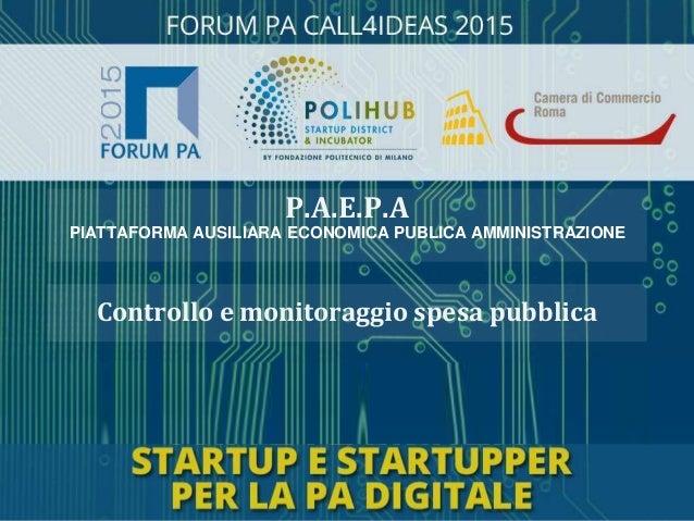 Controllo e monitoraggio spesa pubblica P.A.E.P.A PIATTAFORMA AUSILIARA ECONOMICA PUBLICA AMMINISTRAZIONE