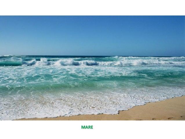 Paesaggi naturali e antropici for Disegni di paesaggi di mare