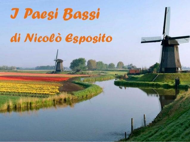 I Paesi Bassi di Nicolò Esposito  1