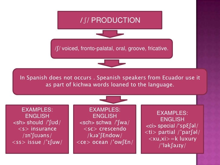 examples of contrastive linguistics Writing a paper in english  to start your investigation you first need to collect relevant examples from a  a dictionary of linguistics and phonetics.