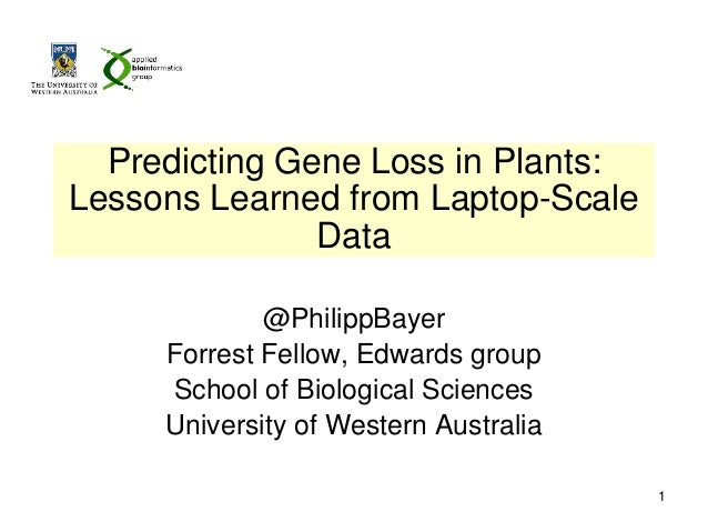 Predicting Gene Loss in Plants: Lessons Learned from Laptop-Scale Data @PhilippBayer Forrest Fellow, Edwards group School ...