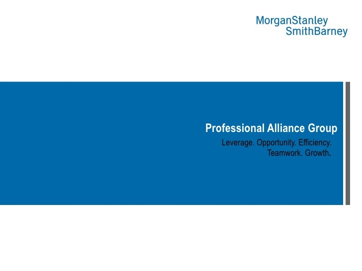 Professional Alliance Group   Leverage. Opportunity. Efficiency.  Teamwork. Growth .