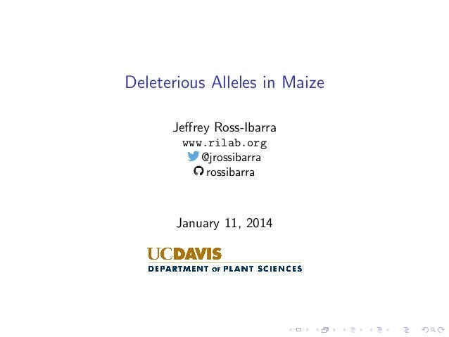 Deleterious Alleles in Maize Jeffrey Ross-Ibarra www.rilab.org @jrossibarra rossibarra  January 11, 2014