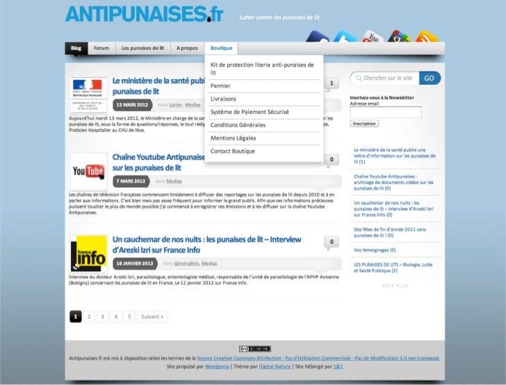 Antipunaises.fr
