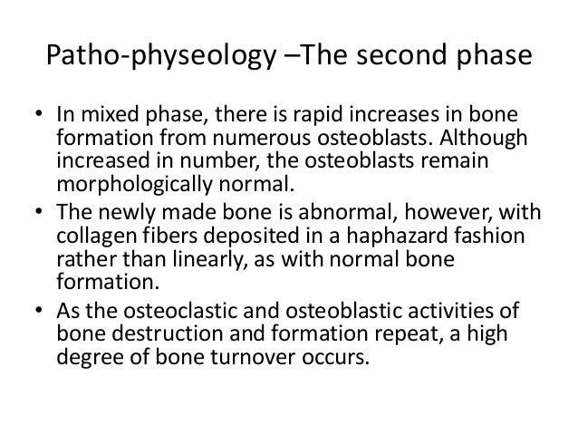 Patho-physeology –The second phase • In mixed phase, there is rapid increases in bone formation from numerous osteoblasts....