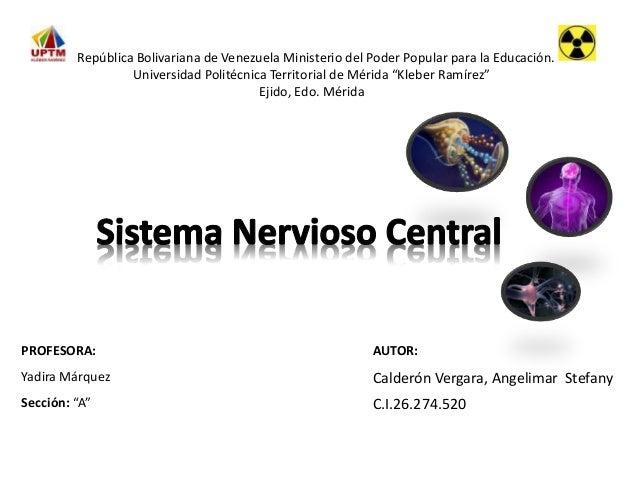 """PROFESORA: AUTOR: Yadira Márquez Calderón Vergara, Angelimar Stefany Sección: """"A"""" C.I.26.274.520 República Bolivariana de ..."""