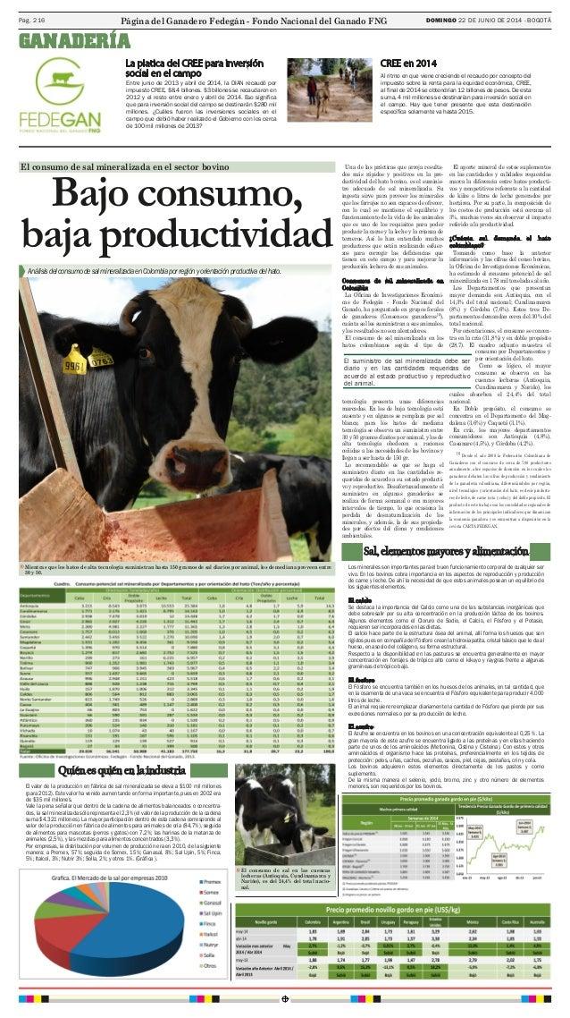DOMINGO 22 DE JUNIO DE 2014 - BOGOTÁPag. 216 Entre junio de 2013 y abril de 2014, la DIAN recaudó por impuesto CREE, $8.4 ...
