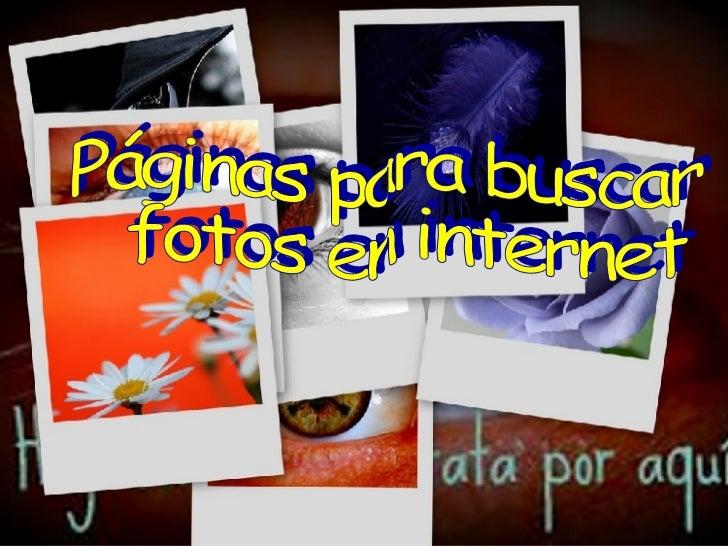 Páginas para buscar fotos en internet