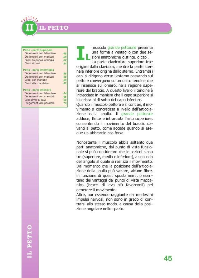 Pagine da body building anatomy - Pagine da colorare croci ...