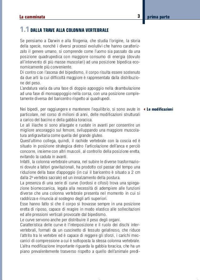 Camminare(versione8):Costill III edizione 13/11/13 08:53 Pagina 3  La camminata  3  prima parte  1.1 DALLA TRAVE ALLA COLO...