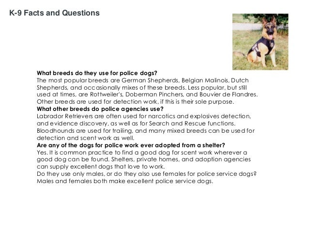 K-9 Facts and Questions  What breeds do they use for police dogs? The most popular breeds are German Shepherds, Belgian Ma...