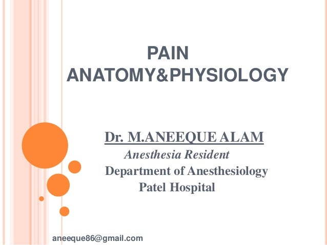 Pain anatomy and physiology