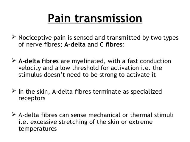 Pain transmission  Nociceptive pain is sensed and transmitted by two types of nerve fibres; A-delta and C fibres:  A-del...