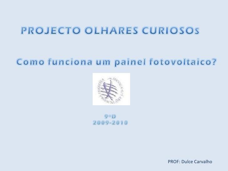 PROF: Dulce Carvalho
