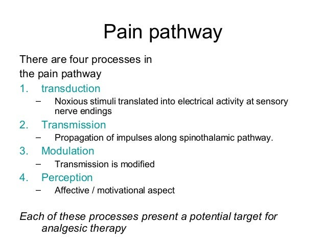 neural pathways and mechanisms in pain sensation Clinical and experimental studies show serial interactions between the intensity of pain sensation,  neural mechanisms  pathways for pain and.
