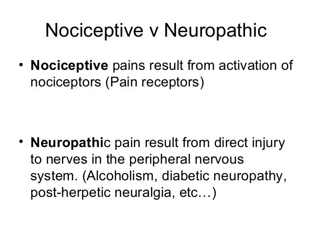 pain receptors and stimuli psychology essay Psychology paper on pain pain veronica tran essay #1 nocioceptors are special nerve receptors designed for stimuli that are encountered as painful.