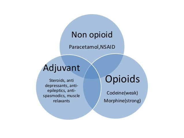 the characteristics of codeine an opioid pain medicine What preparations of codeine are available  codeine is a narcotic pain  reliever (analgesic) used to.
