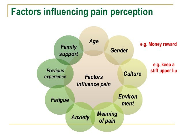 The influence of social factors on the individual experience of pain