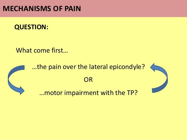 QUESTION: What come first… …the pain over the lateral epicondyle? OR …motor impairment with the TP? MECHANISMS OF PAIN