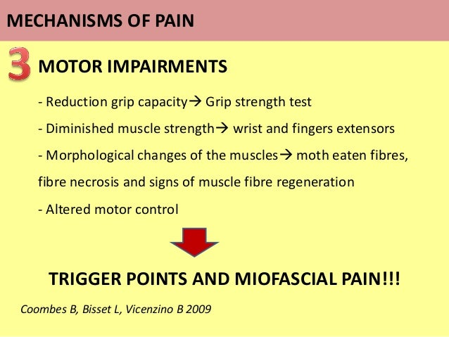MOTOR IMPAIRMENTS - Reduction grip capacity Grip strength test - Diminished muscle strength wrist and fingers extensors ...
