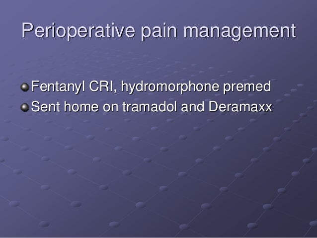 Pain Presentation 1